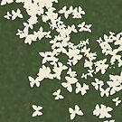 Butterflies Galore 3 by georgiegirl