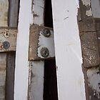 White Ladder by janehf