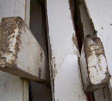 White Ladder 4 by janehf