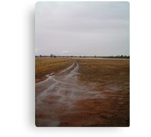 dull gold track Canvas Print