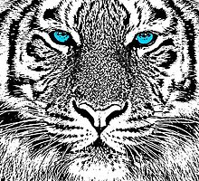 Tiger Portrait Black and White in Graphic Etching Style by Garaga