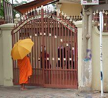 Buddhist Priest by AlexOZ