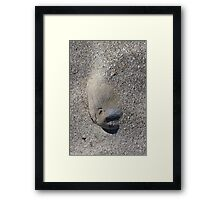 A different rock face at the beach... Framed Print