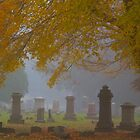 Autumn and Fog by John Butler