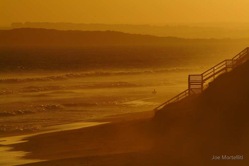 Wave Rider,13th Beach by Joe Mortelliti