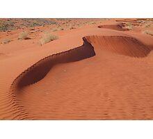Sandhill,Madigan Line Simpson Desert Photographic Print