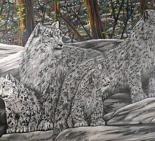 Snow Leopards by Anthony Middleton
