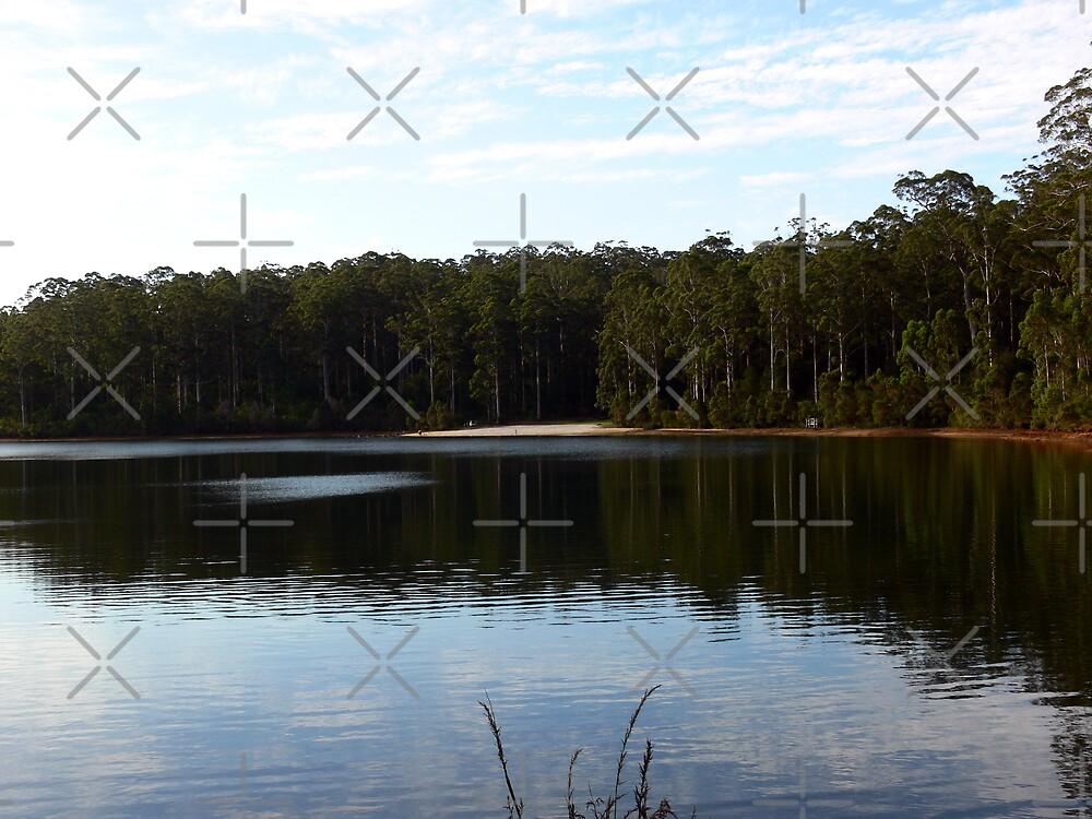 Peaceful lake. by Sandra Chung