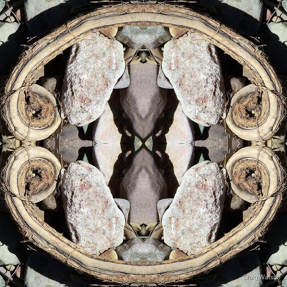 Creek Bed Kaleidoscope #1 by Craig Watson