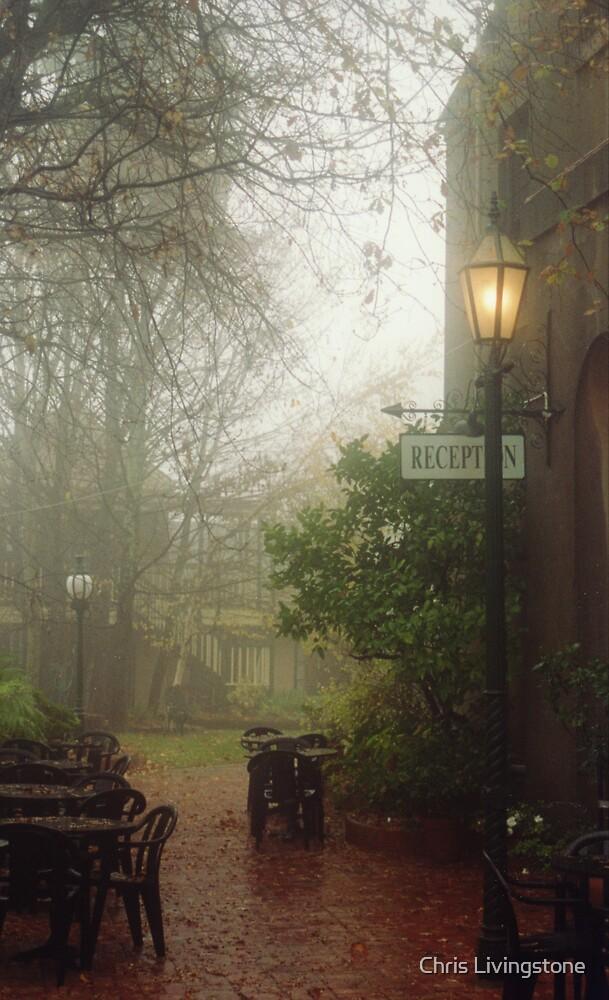 Misty courtyard, Beechworth by Chris Livingstone
