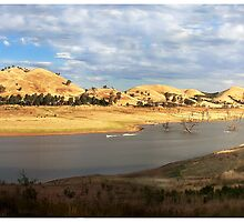 Golden hills by Chris Livingstone
