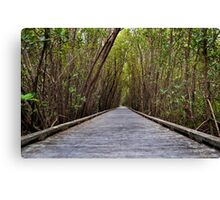 Not the Yellowbrick Road!  Canvas Print