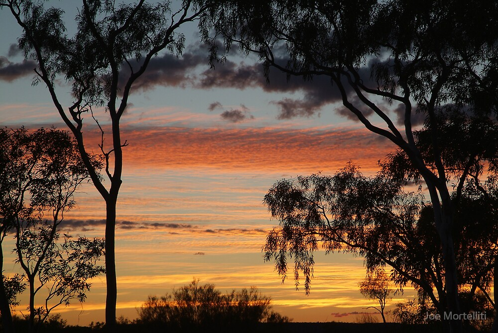Sunrise through the Ghost Gums,Batton Hill,North Simpson Desert by Joe Mortelliti