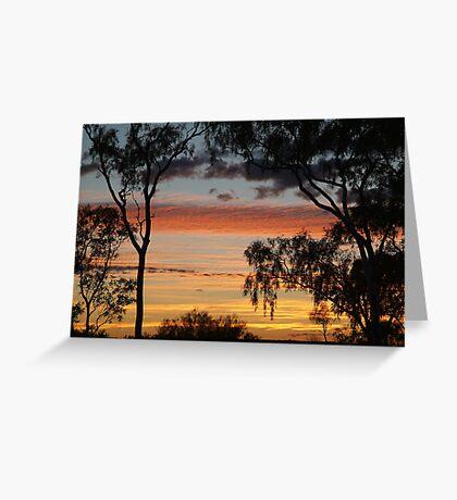 Sunrise through the Ghost Gums,Batton Hill,North Simpson Desert Greeting Card