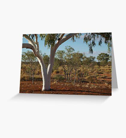 Ghost Gum,Outback Australia,N.T. Greeting Card