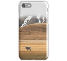 Winter Countryside iPhone Case/Skin