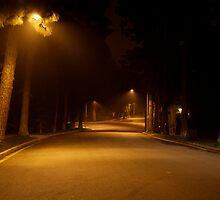 Late night, Beverley Hills, CA by Morgan Drew