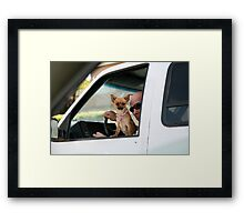 Pimp dog Framed Print