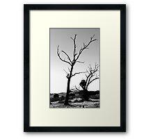 Salted Earth Framed Print