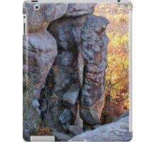 Devil's Smokestack 2 iPad Case/Skin