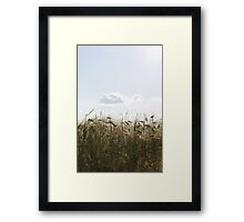 A touch of Earth Framed Print