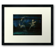 WDV - 451 - Focus and Hydra Framed Print