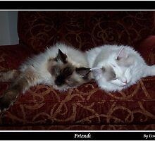 Friends by Lissy
