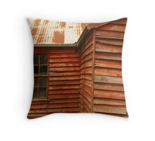 Failing Foundations Throw Pillow
