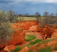 Natures Colours,OutbackAustralia by Joe Mortelliti