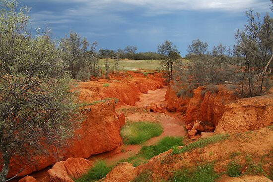 Natures Colours,OutbackAustralia by Joe Mortelliti