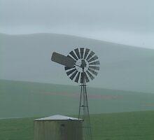 Rain Storm, Southern Flinders Ranges by Joe Mortelliti