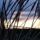 Sunrise in Carlsruhe by Steven Zan