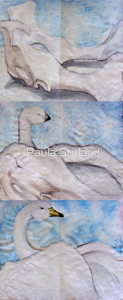 Reborn by Paula Stirland