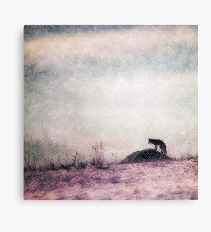 I only hear silence Canvas Print