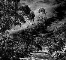 Djerriwarrah Creek by bettyb