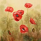 Red Poppies On Cream Square  by Joan A Hamilton
