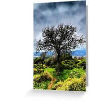 Fruit Tree Greeting Card
