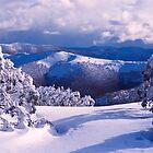 Alps View by John Barratt