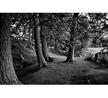 Hudswell Grange Photographic Print