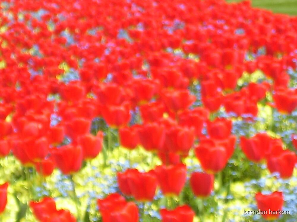 All The Pretty Flowers by brendan harkom