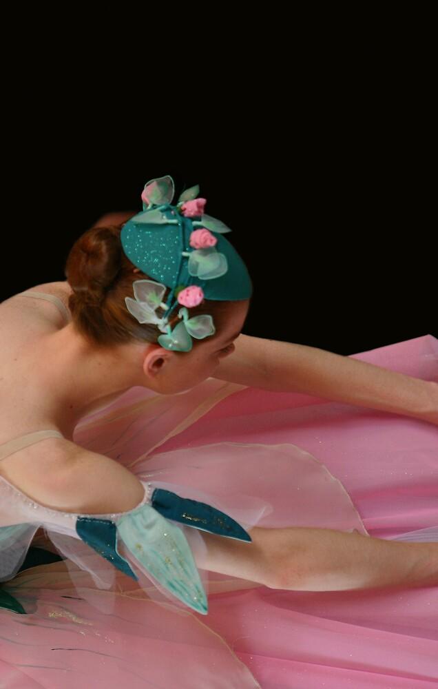 Petals by Belinda  Strodder