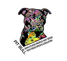 Pitbull BSL Black Photographic Print