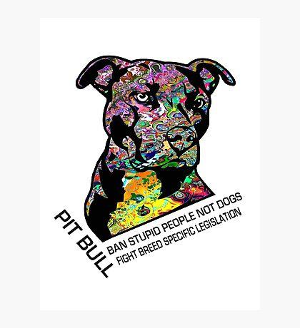 Pitbull BSL Black Photographic Print