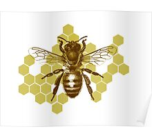 Bumble Hive Poster