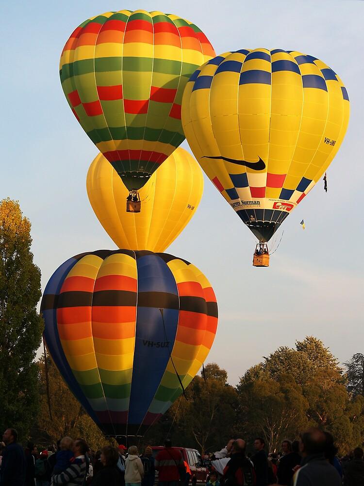Hot Air Balloons by pbdz22