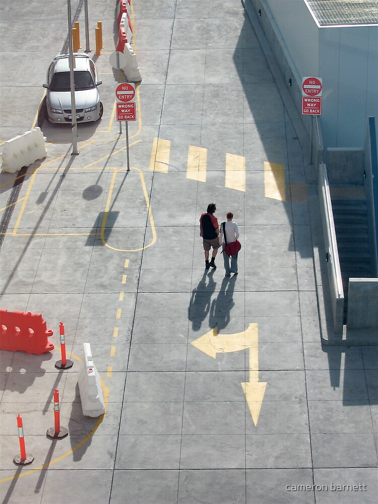 pedestrian crossing by cameron barnett