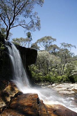 Queensland Waterfall by Anna Domoore