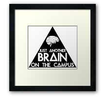Another Triangle On The Campus Framed Print