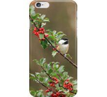 Chickadee in Holly Bush iPhone Case/Skin