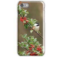 Chickadee in Holly Bush iPhone Case/Skin